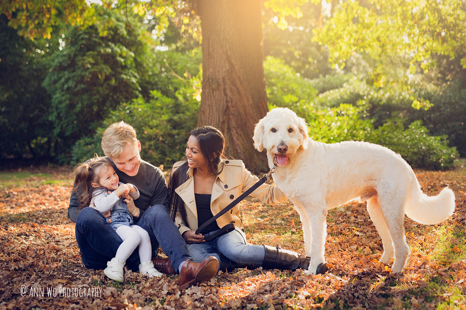 ann-wo-family-photography-outdoor-lifestyle-white-dog-london.jpg