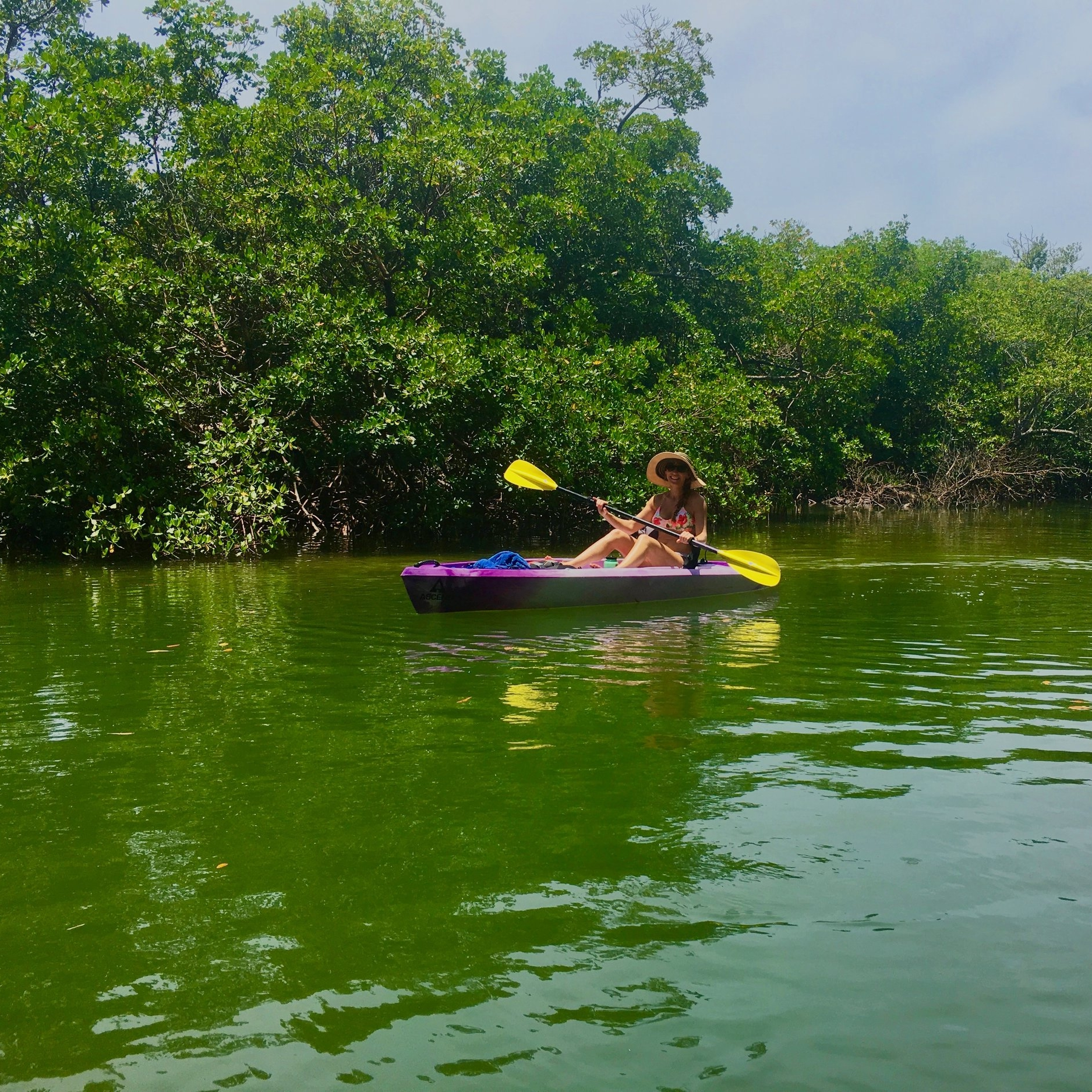 Eco Endeavors Kayak Tours