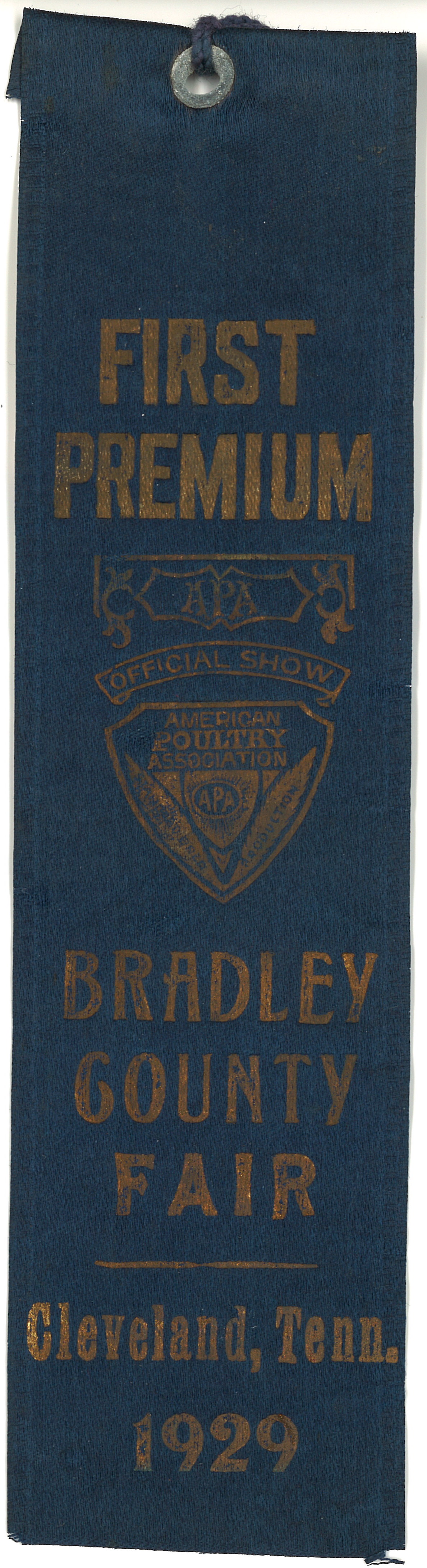 First Premium Ribbon from American Poultry Association at the Bradley County Fair, 1929.