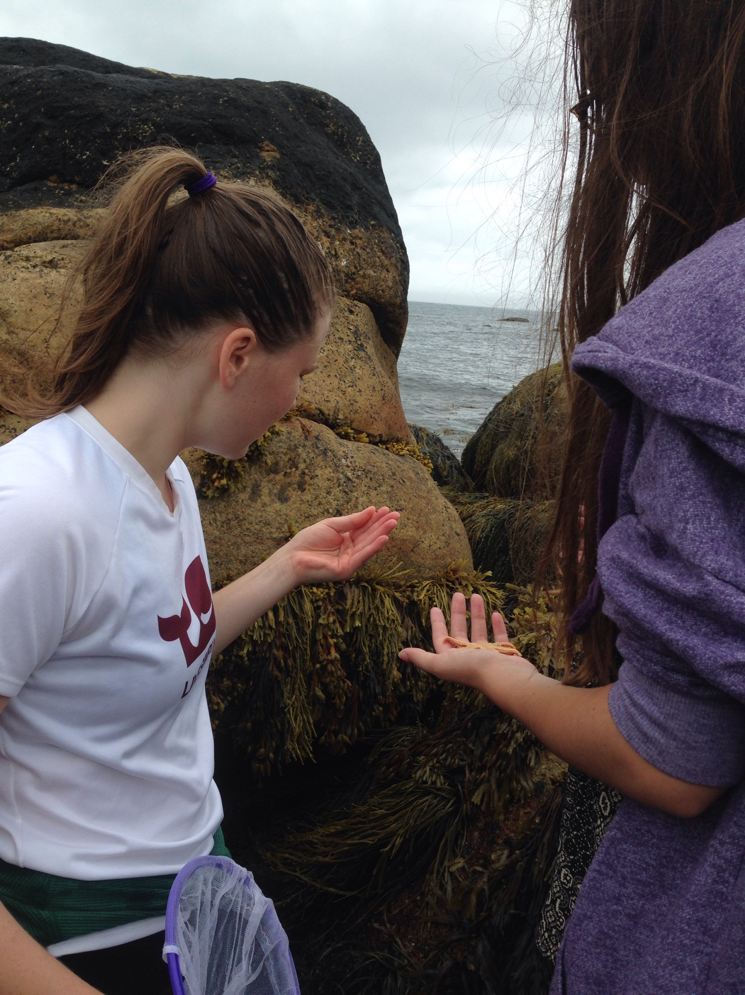Starfish in hand - Tidal pool Wild Wednesday