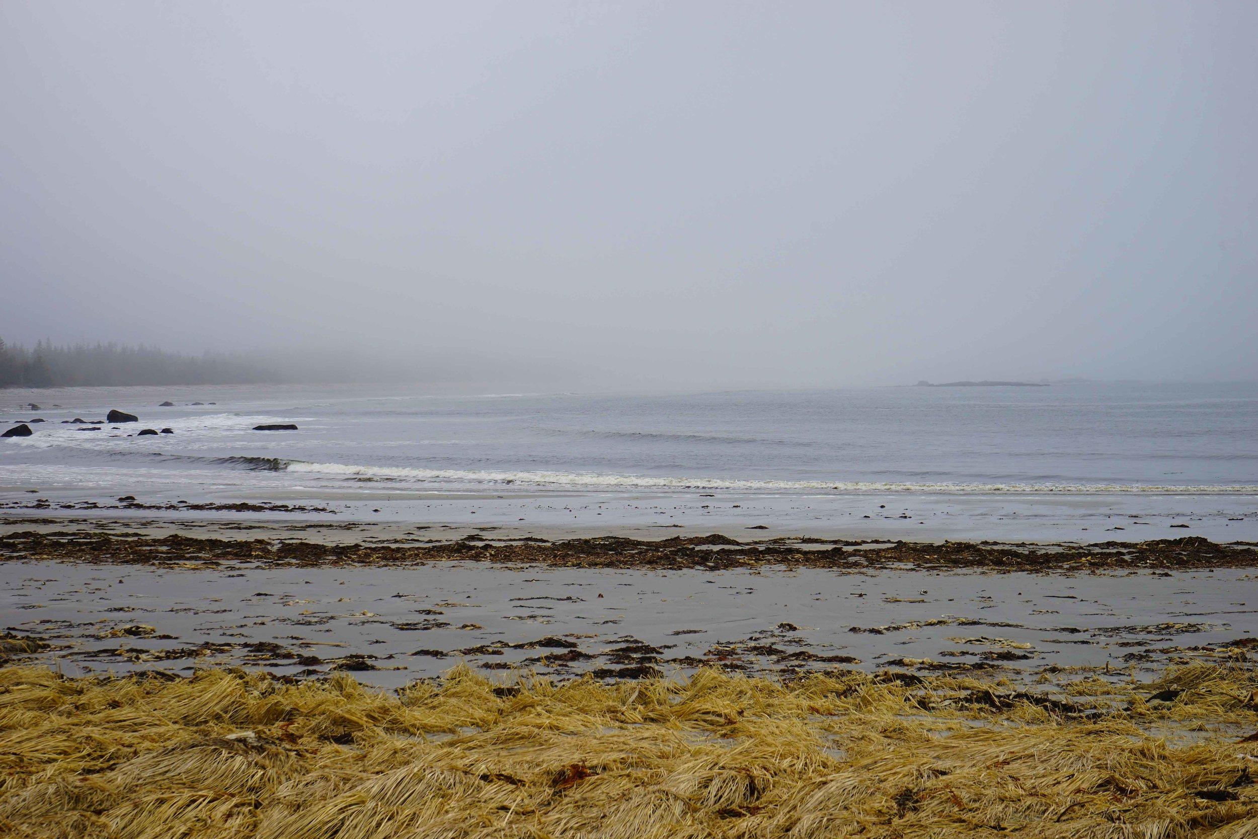 Sandy-Bay-1.jpg