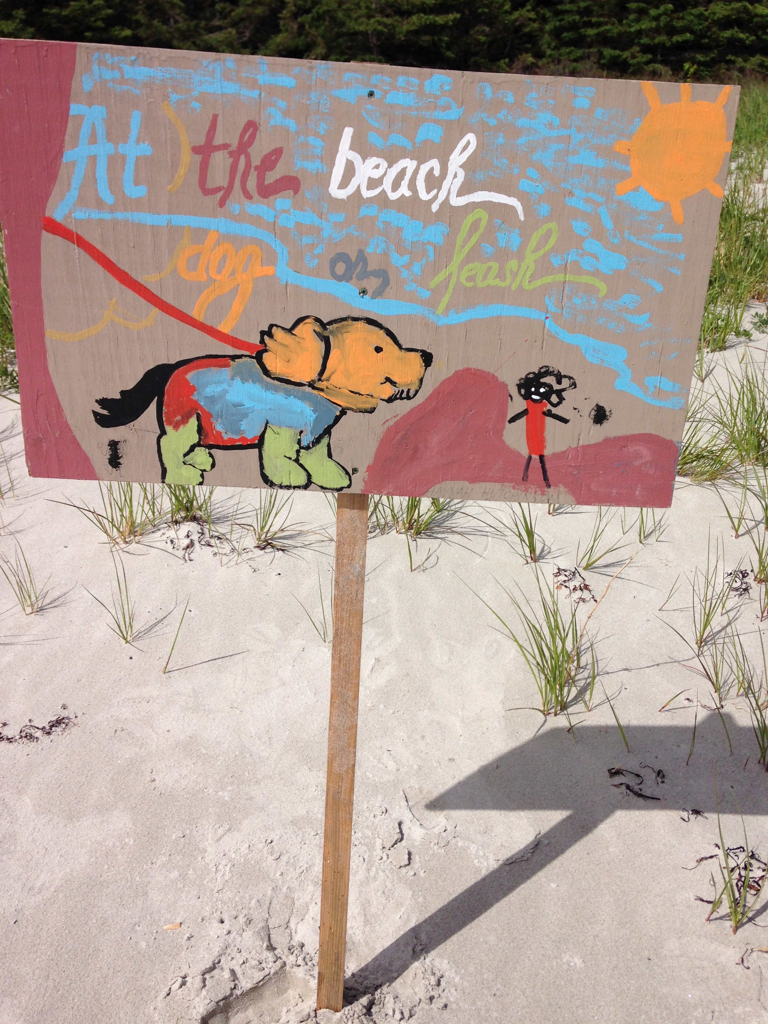 Stewardship initiatives at Carters Beach