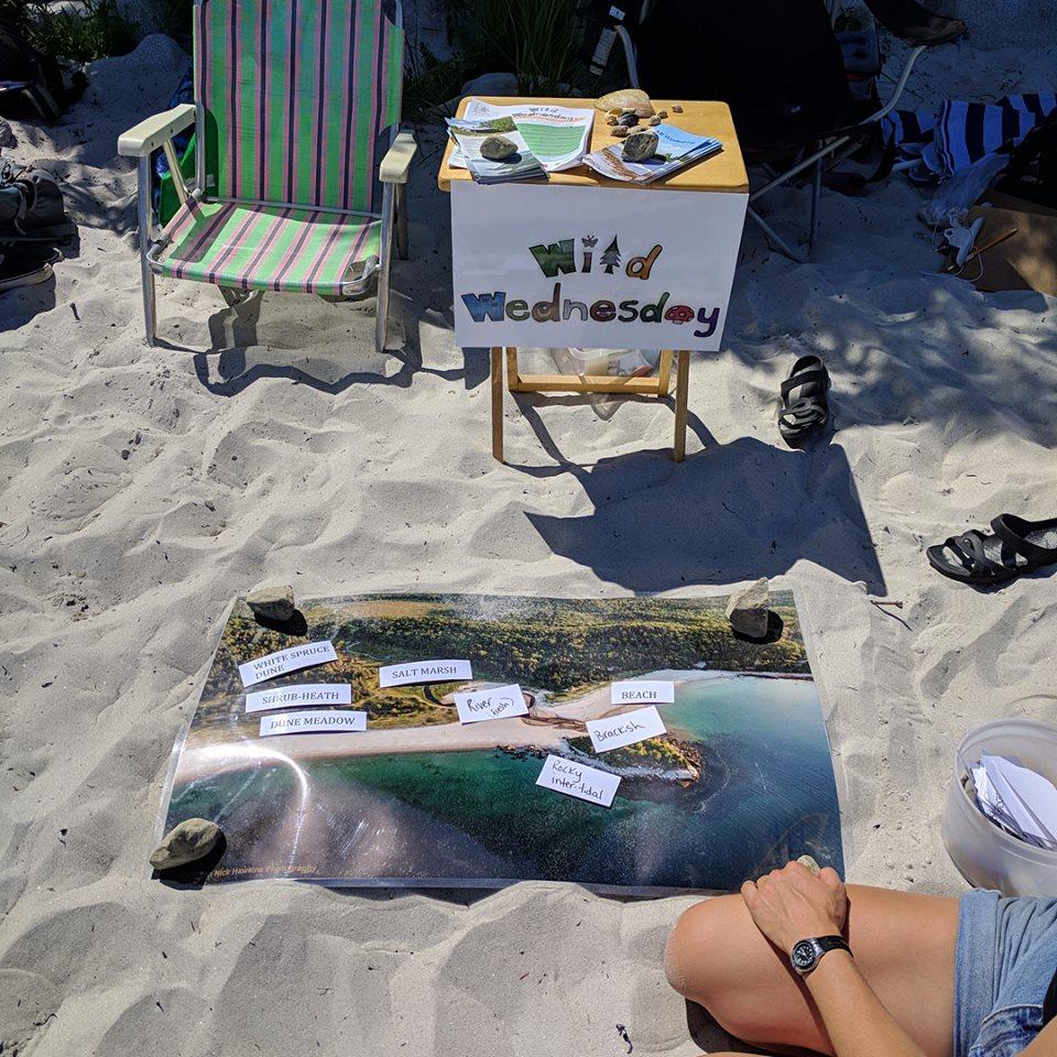 Carters beach.jpg