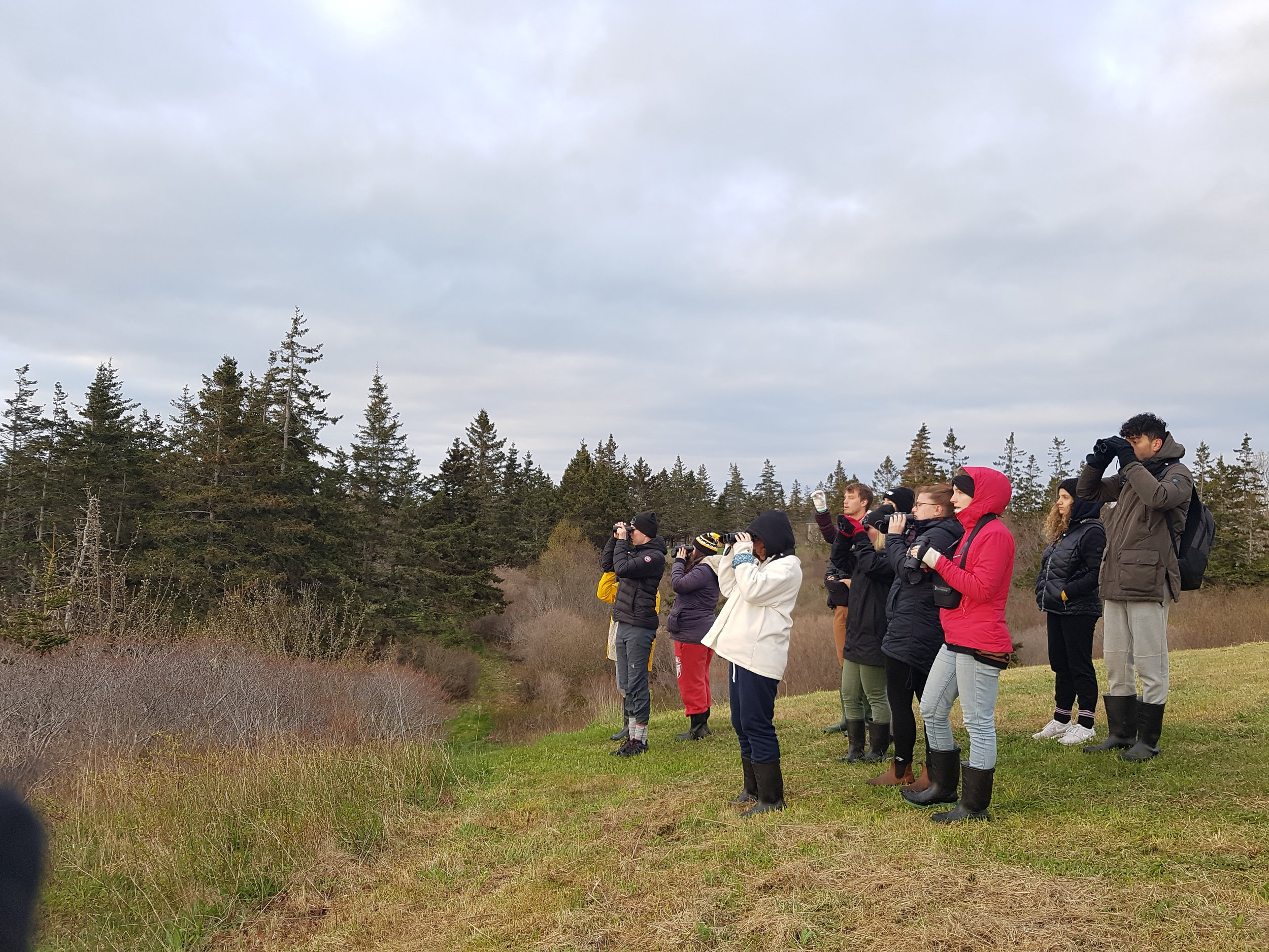 Dalhouse SEASIDE Ornithology students scouting for birds. Photo by Dr. Sarah Gutowsky.