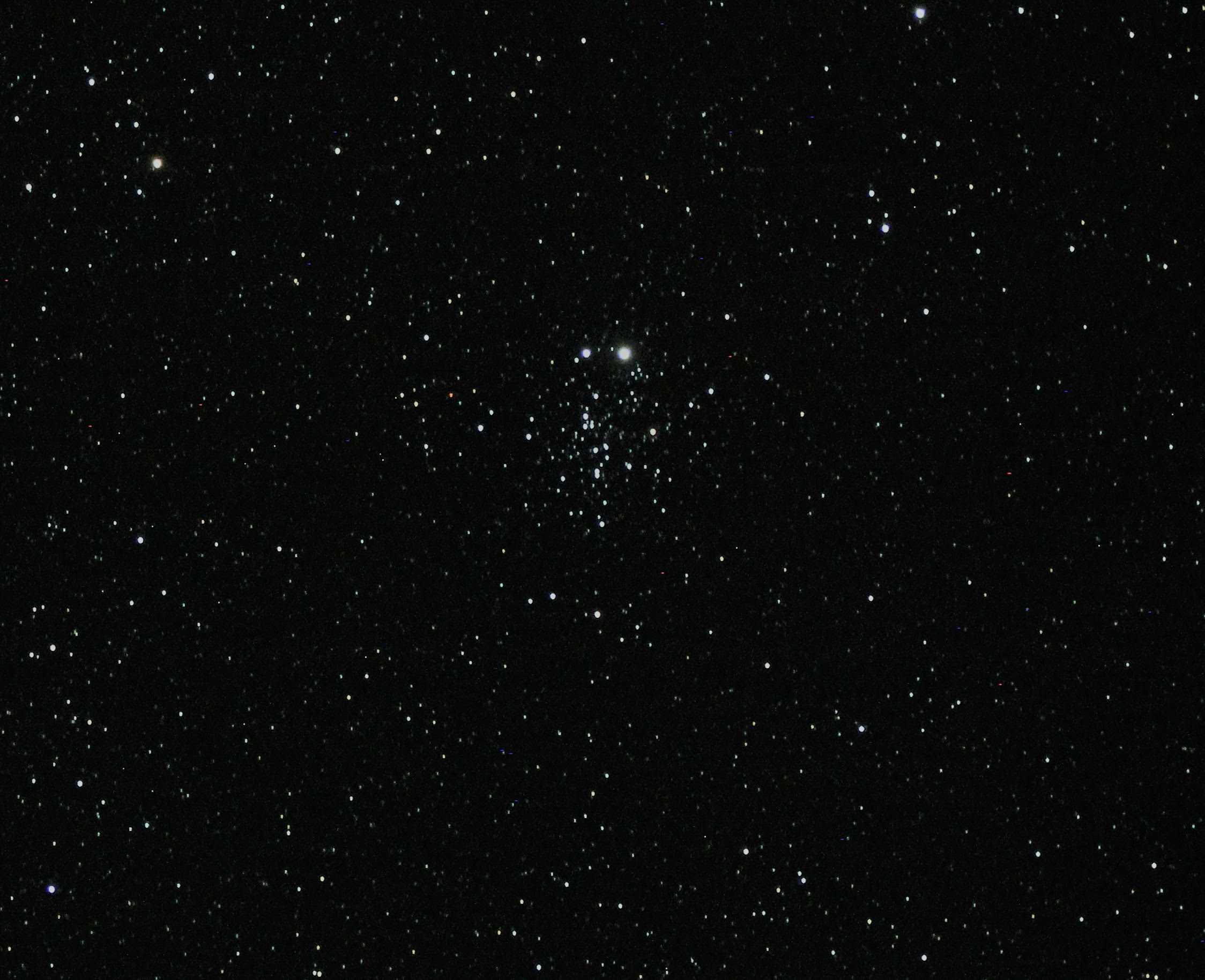 NGC 457, the Dragonfly Cluster.jpg