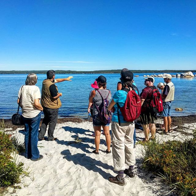 It was such a perfect day for our second to last #WildWeekends hike of the season! A huge thanks to @gigawatts1.21 for sharing his knowledge with us and to @ns_parks for supporting our work this season! . . . #naturalhistory #cultureandclimatechange #canadianhistory