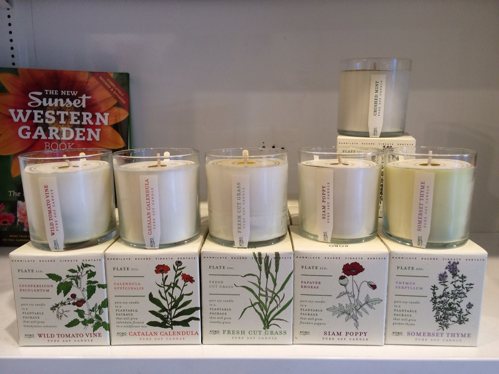 Kobo Candles and Plantable Boxes