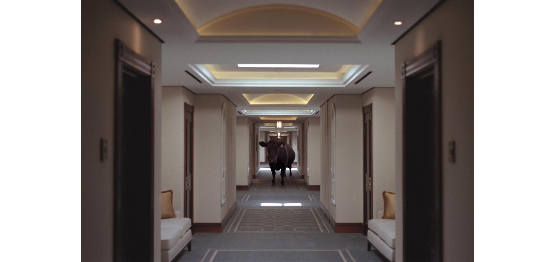 161000 hotel3 sq.jpg