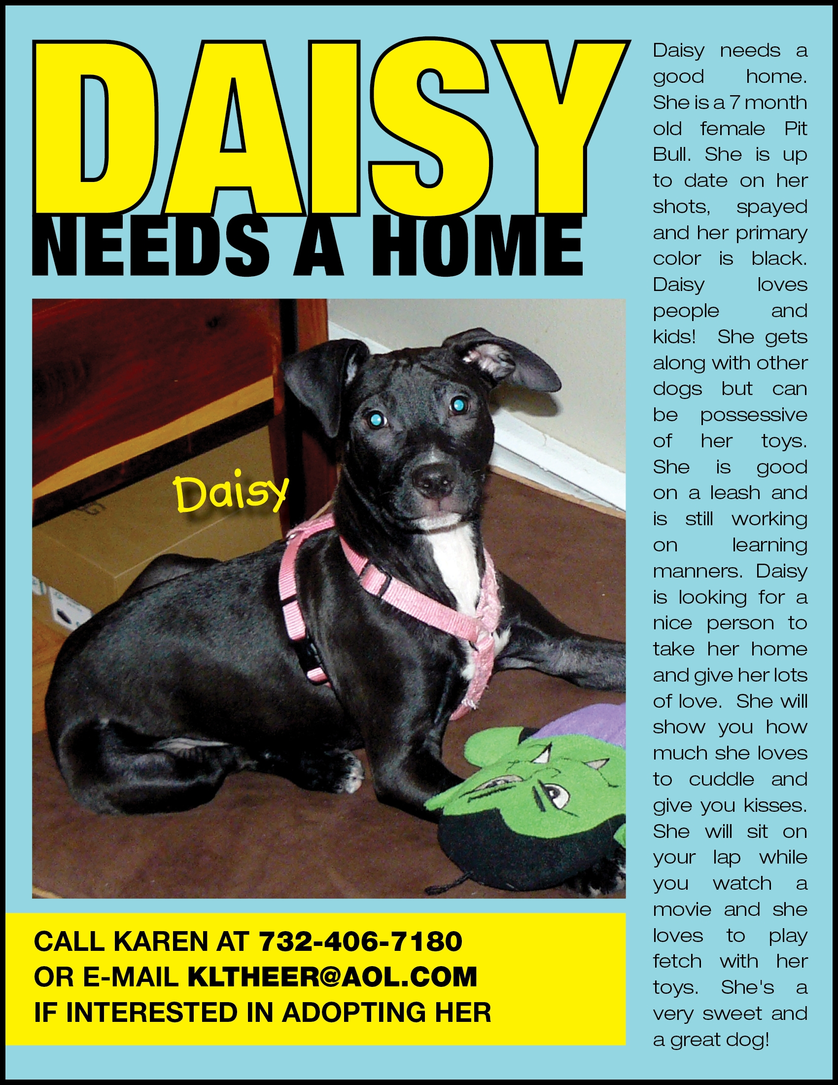 Daisy's Flyer