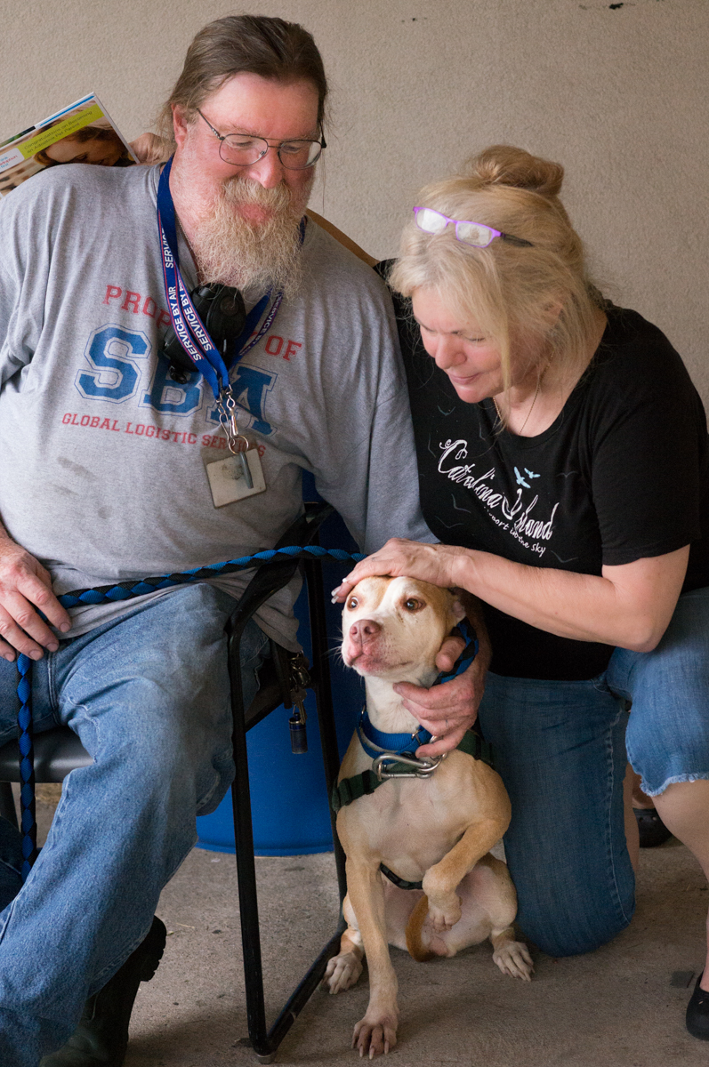 """Bella (now """"Harley"""") with mom and dad"""