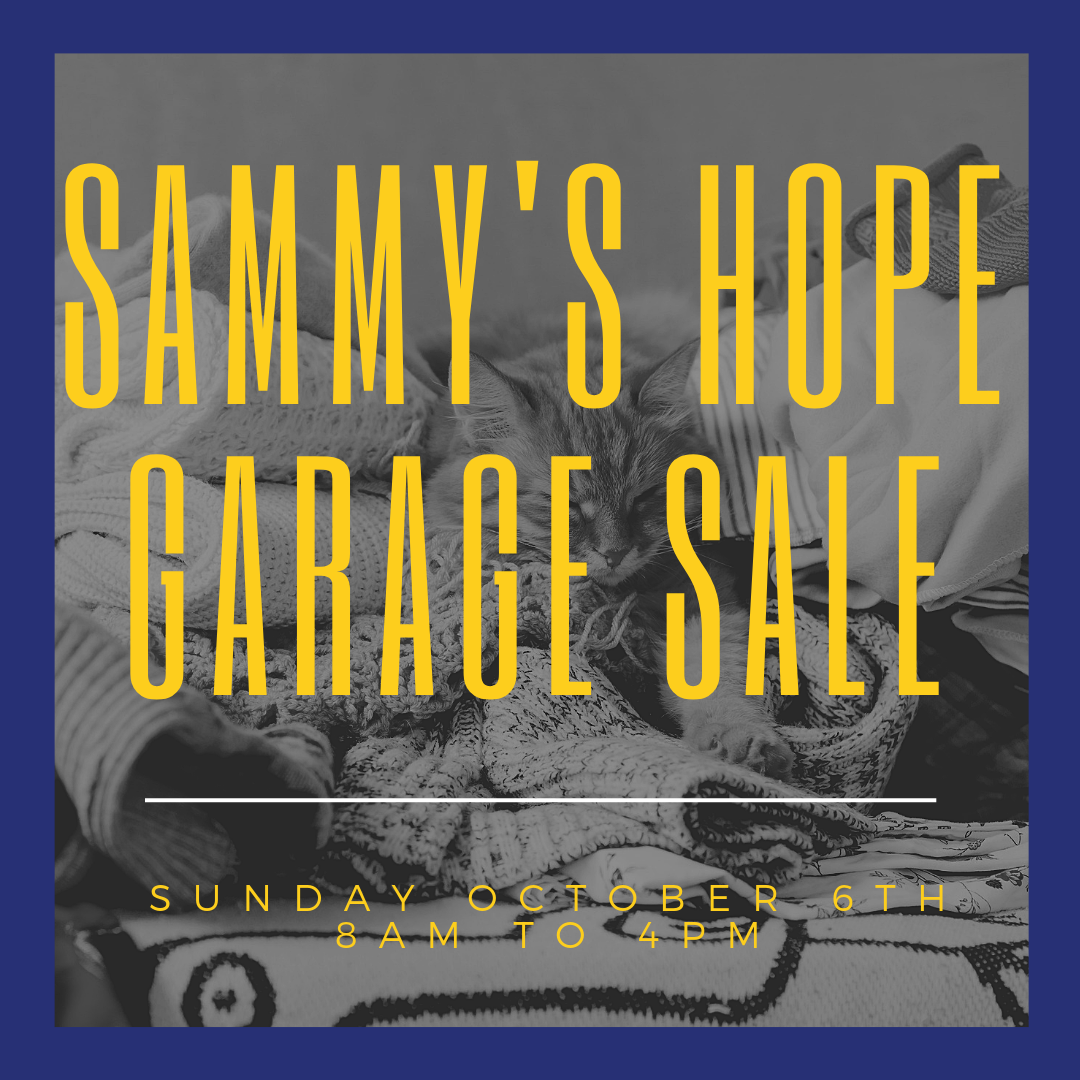sammy's hope must go.png