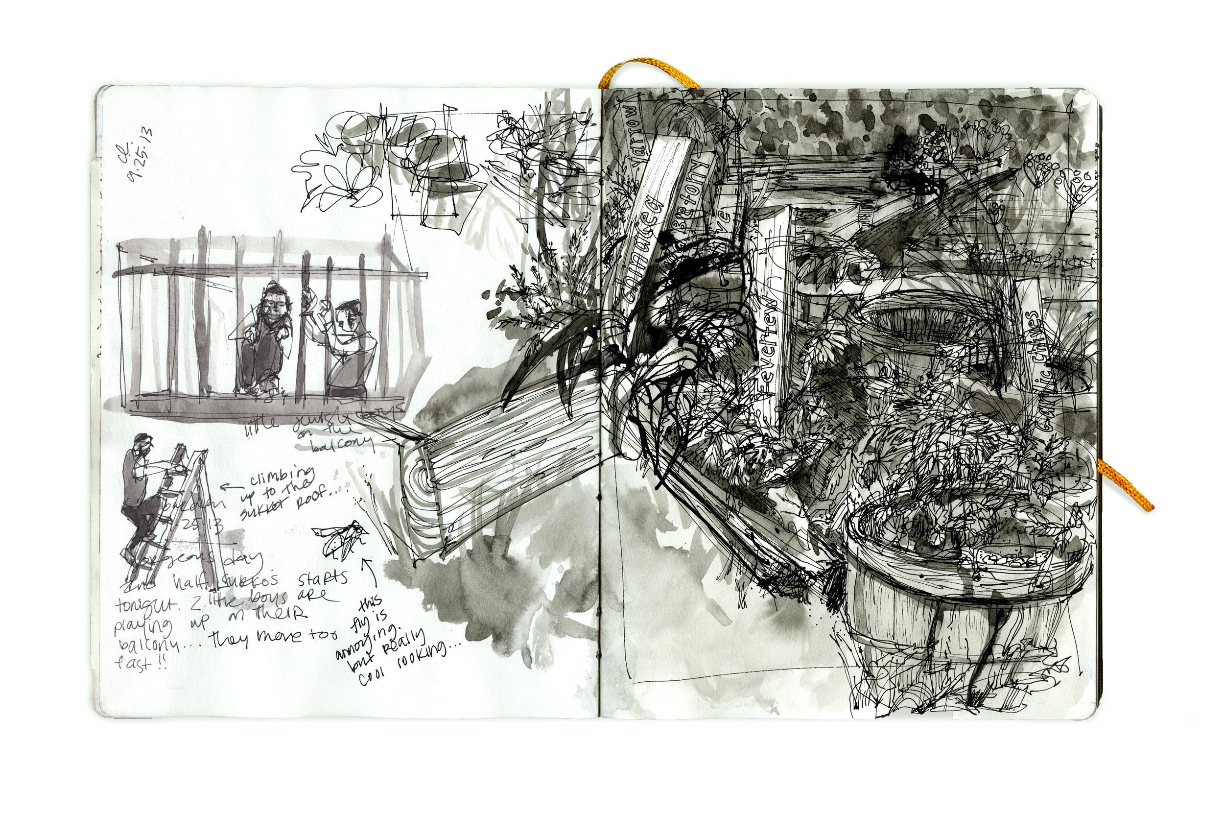 Garden 9-25-13.jpg
