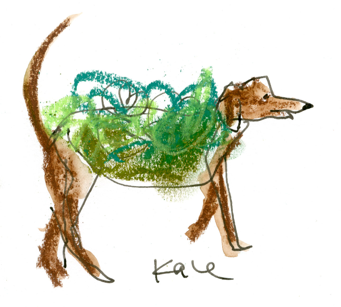 This dog was wearing a green shirt with kale glued all over it © Carly Larsson 2014