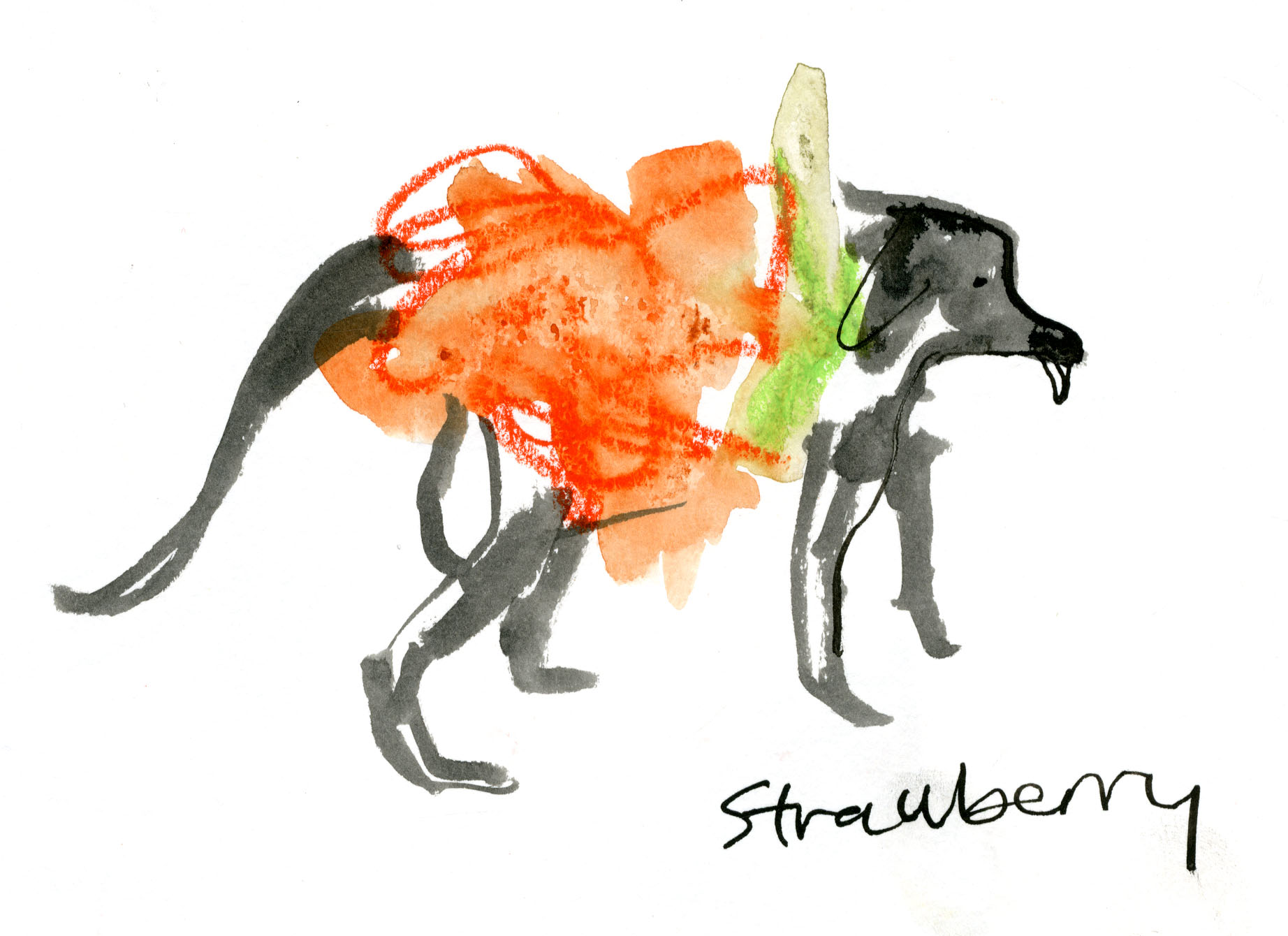 Fluffy strawberry dog © Carly Larsson 2014
