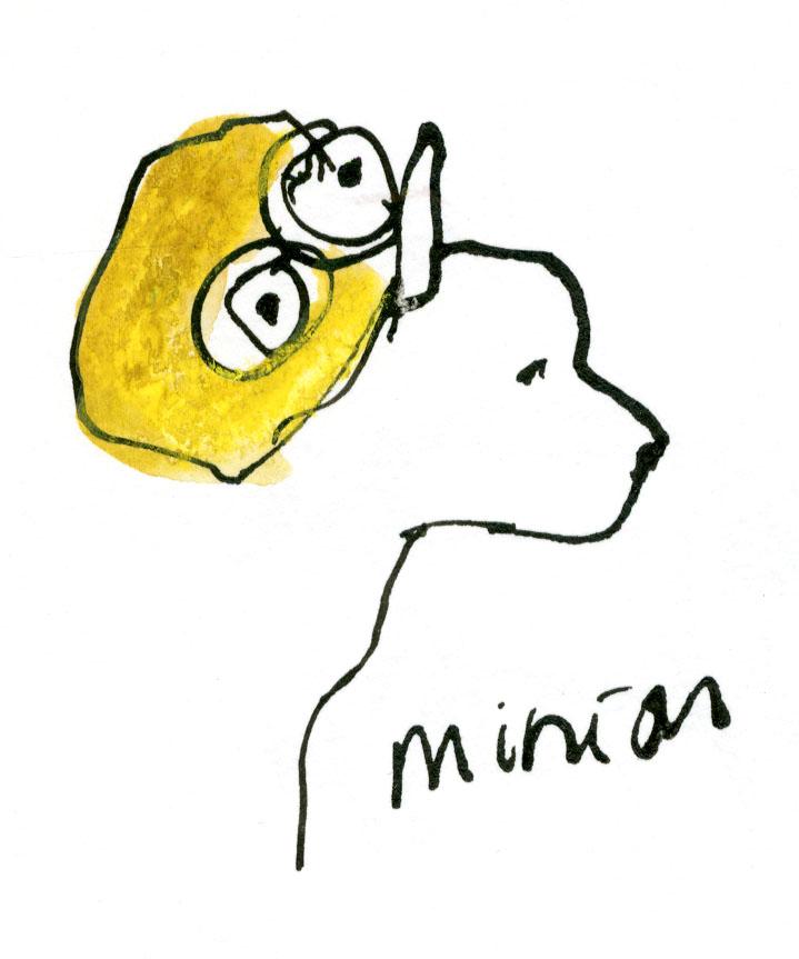 Minion dog © Carly Larsson 2014