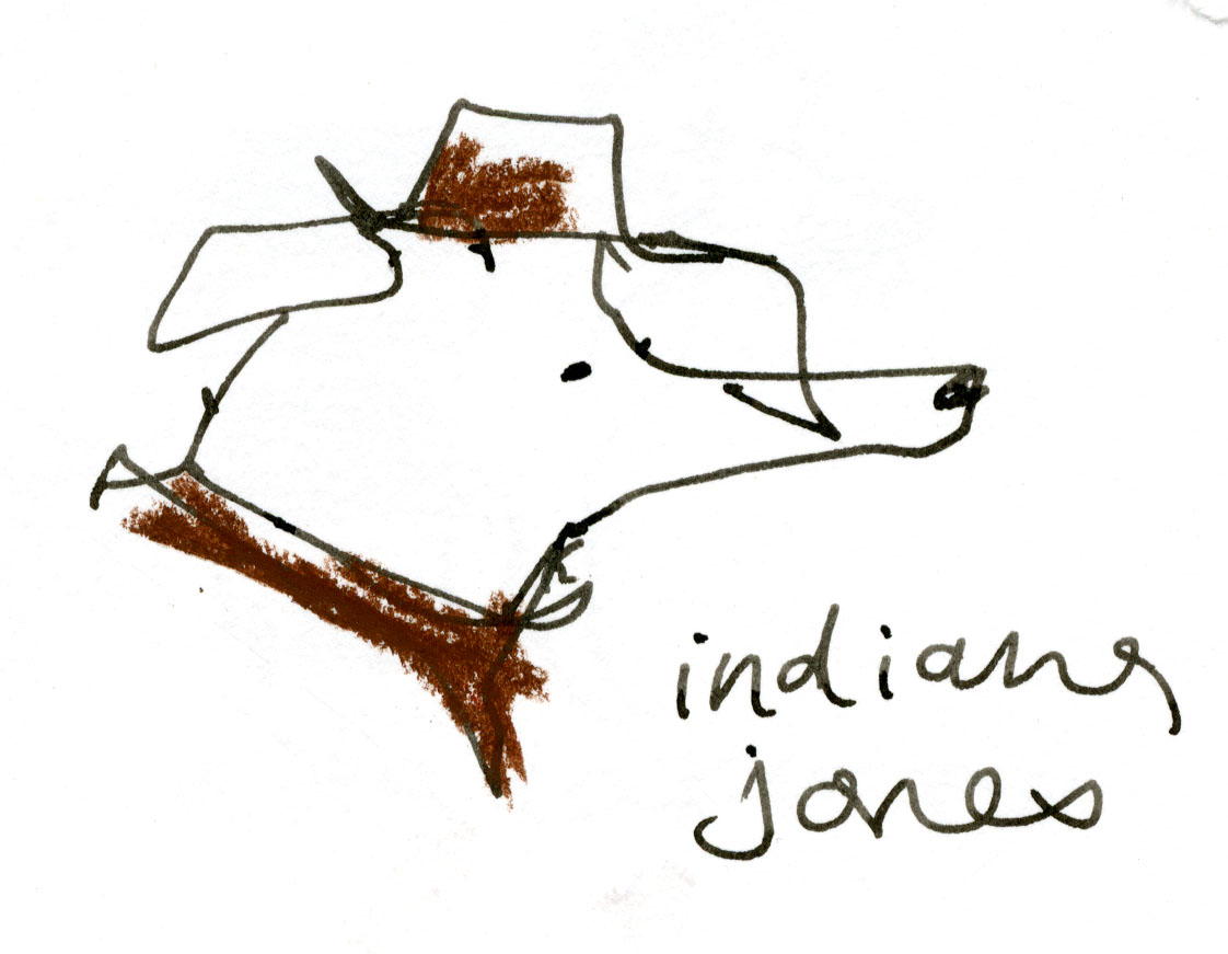 Indiana Jones dog © Carly Larsson 2014