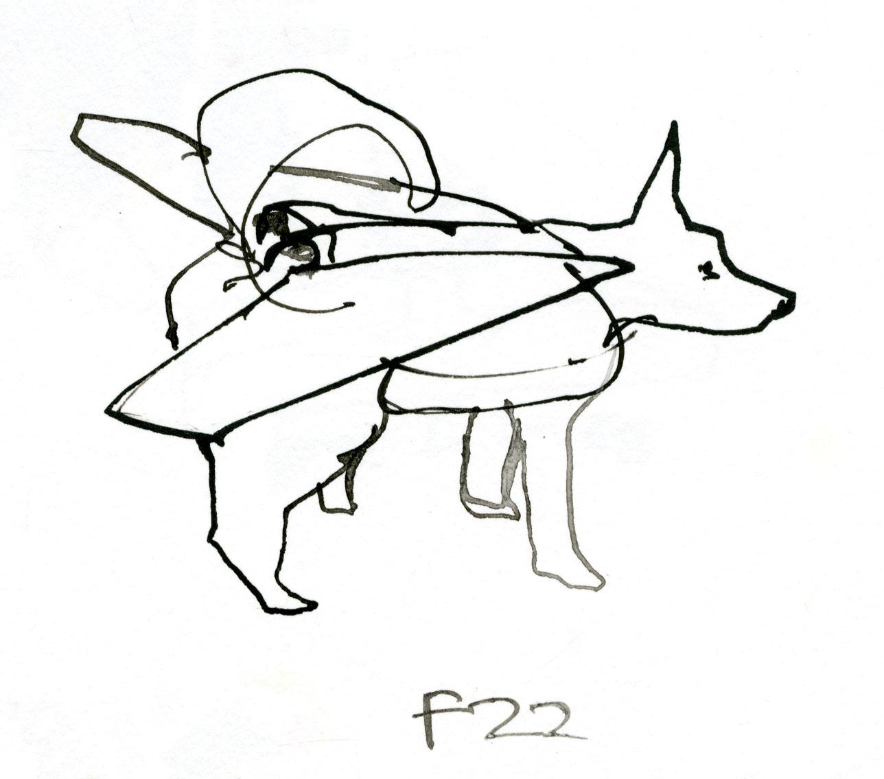 F22 Bomber dog © Carly Larsson 2014