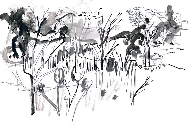 Landscape in the Berkshires © Carly Larsson 2015