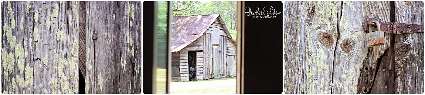 Elizabeth Ladean Photography - visiting my carolina 024