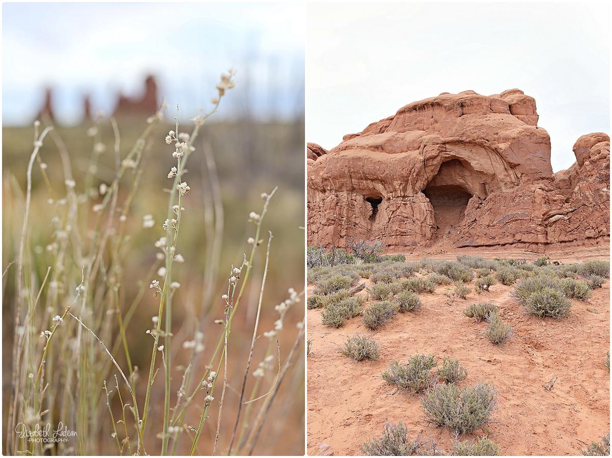 Arches National Park_B&Wtravel_1648.jpg