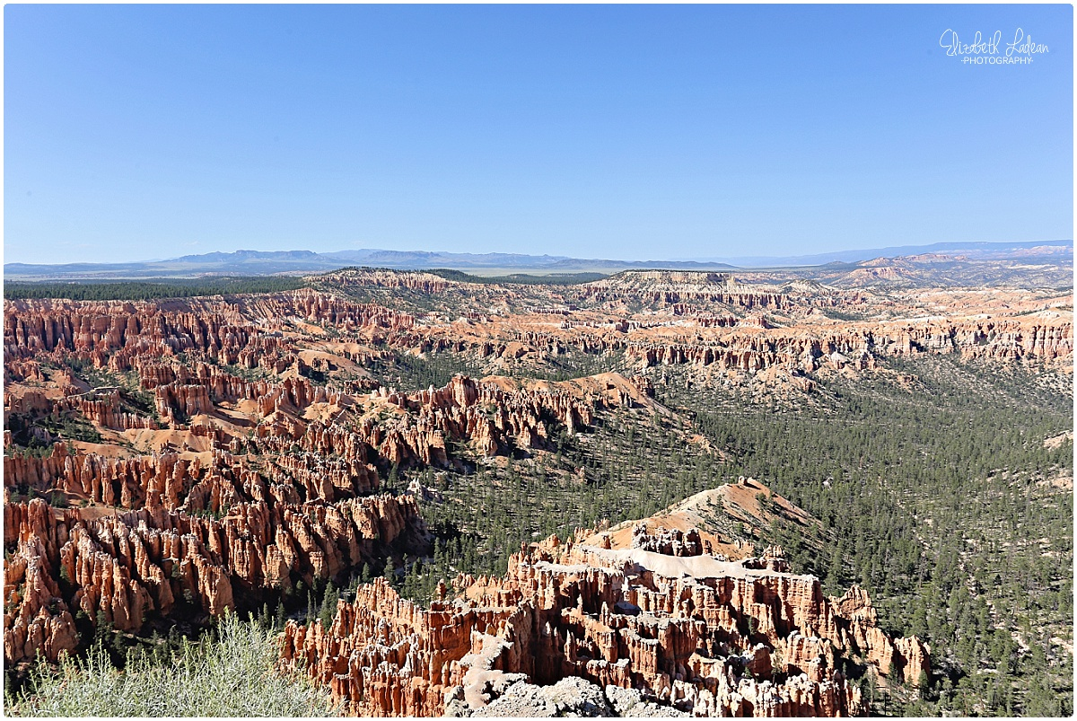 Bryce Canyon National Park_B&Wtravel_1663.jpg