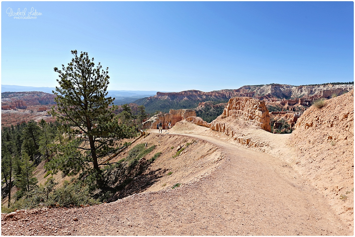 Bryce Canyon National Park_B&Wtravel_1682.jpg