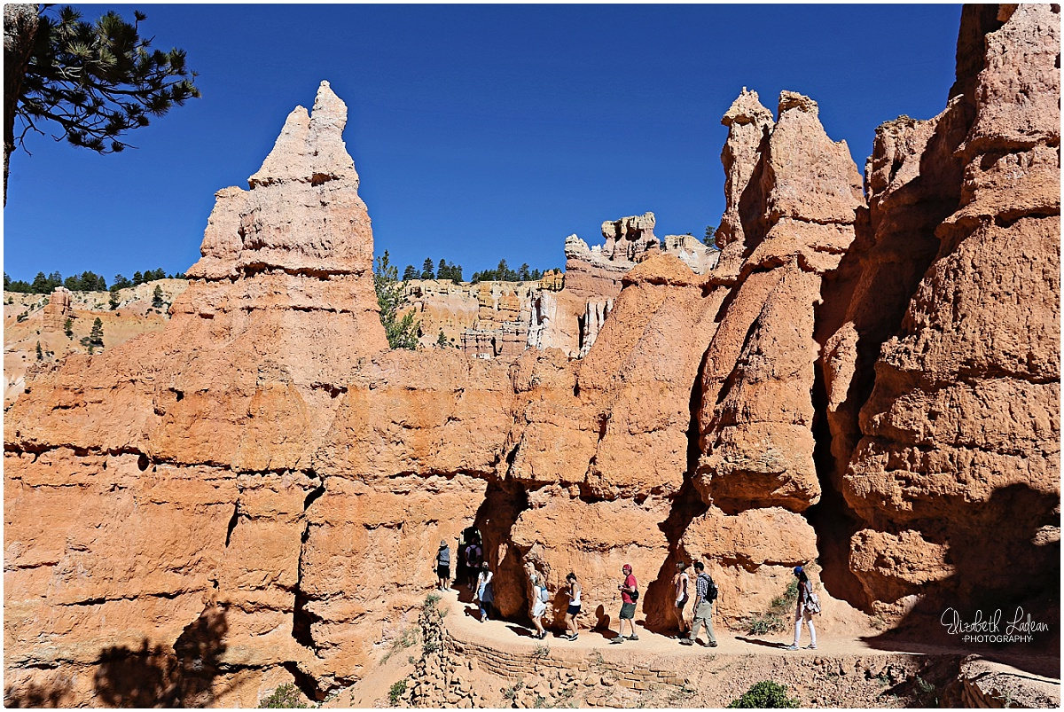 Bryce Canyon National Park_B&Wtravel_1685.jpg