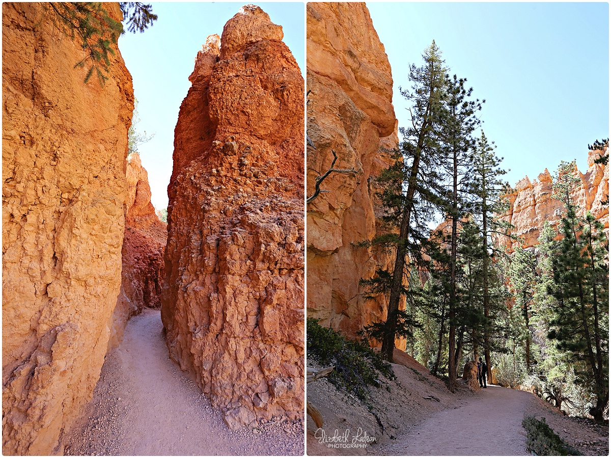 Bryce Canyon National Park_B&Wtravel_1686.jpg