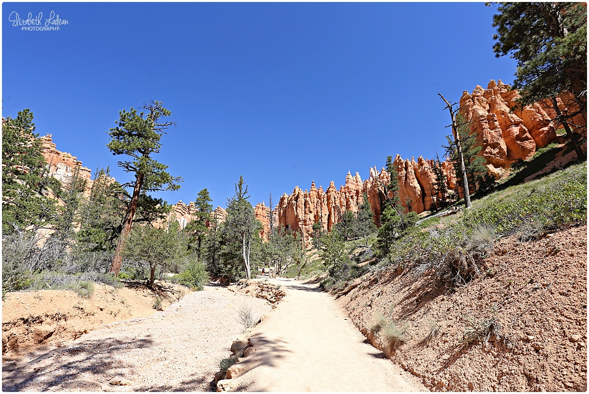 Bryce Canyon National Park_B&Wtravel_1688.jpg