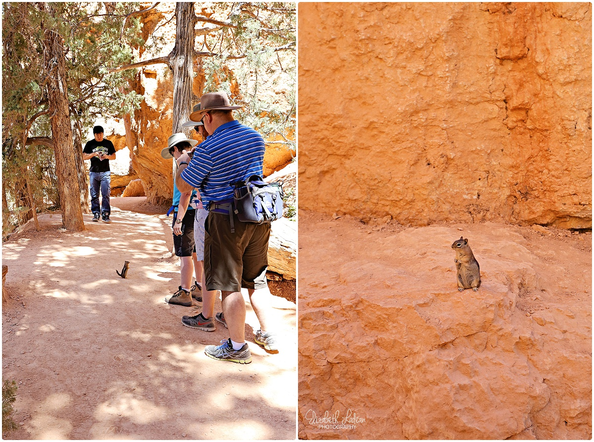 Bryce Canyon National Park_B&Wtravel_1691.jpg