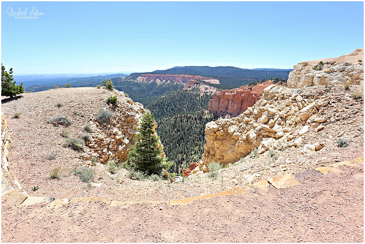 Bryce Canyon National Park_B&Wtravel_1700.jpg