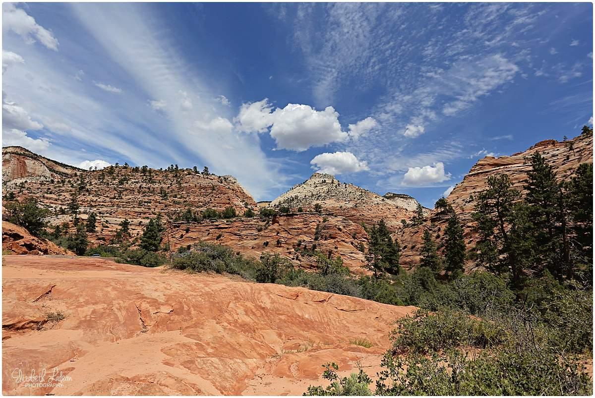 Zion National Park_B&Wtravel_1722.jpg