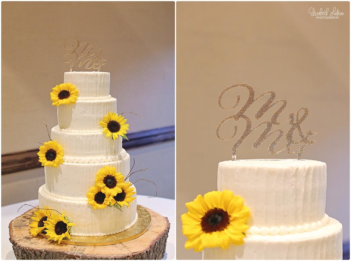 North Carolina Wedding Photography - Elizabeth Ladean Photography_2445.jpg