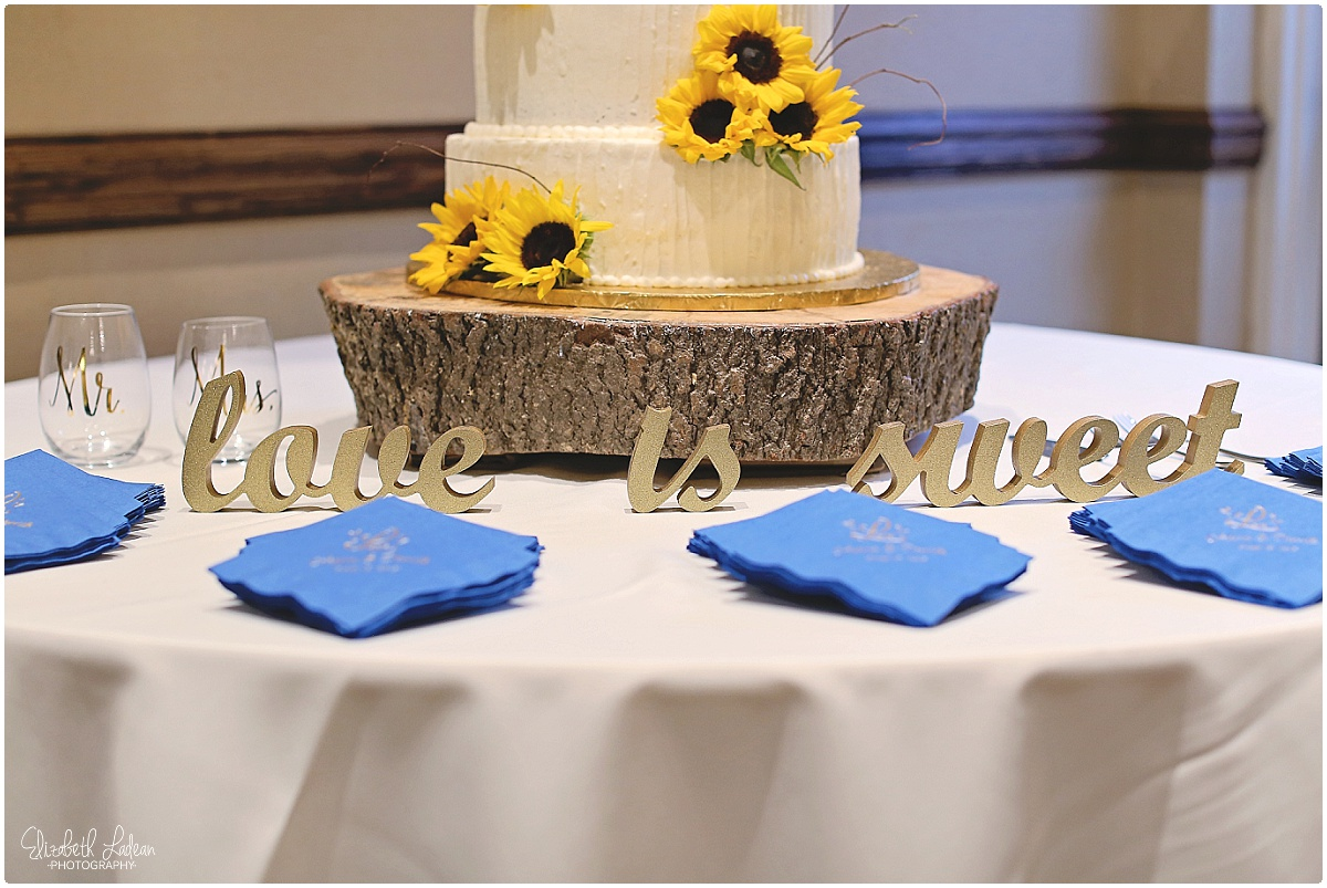 North Carolina Wedding Photography - Elizabeth Ladean Photography_2444.jpg