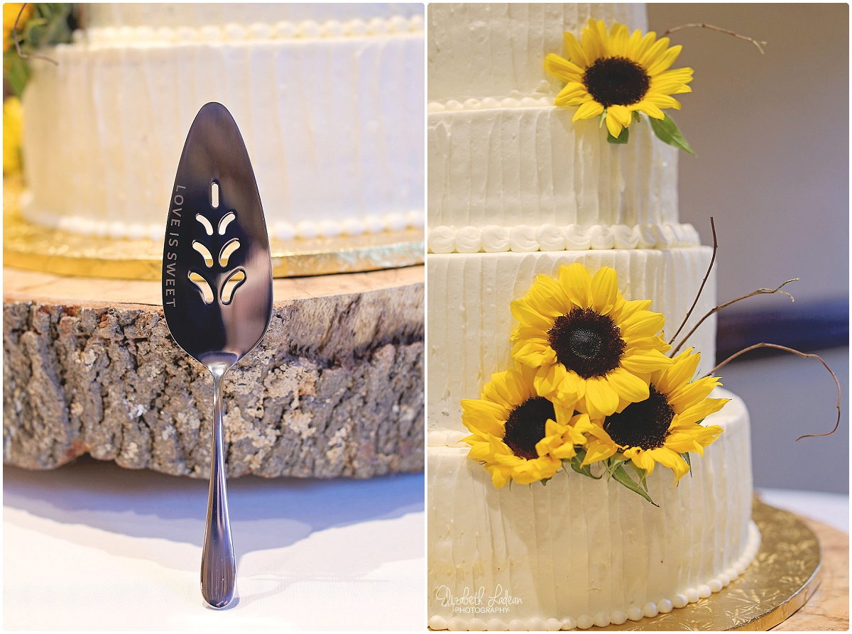 North Carolina Wedding Photography - Elizabeth Ladean Photography_2447.jpg