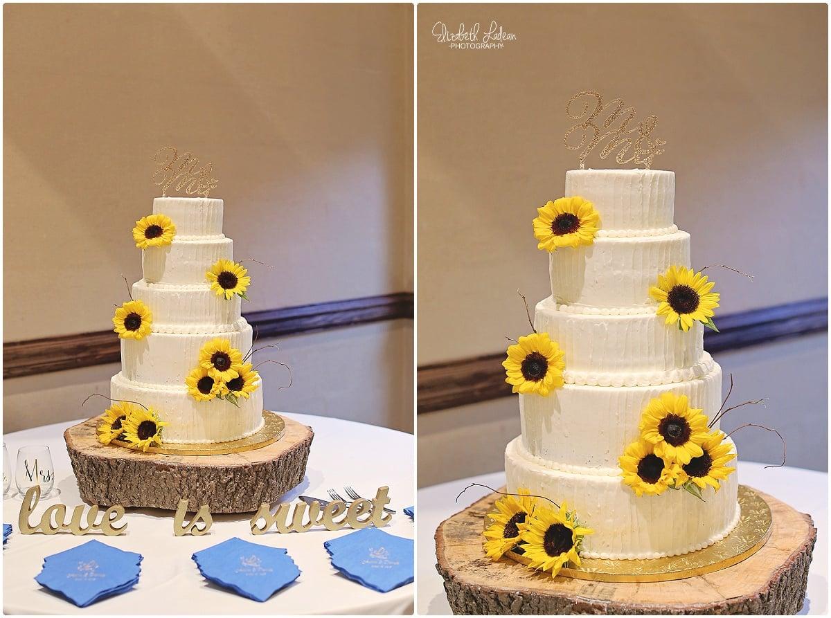 Kansas City Photographer-Elizabeth Ladean-Best-Of-WeddingDetails_2015_3544.jpg