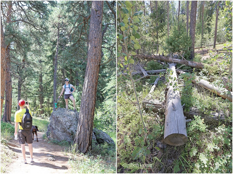 Colorado-Conifer+Evergreen-ElizabethLadeanPhotography--_6069.jpg