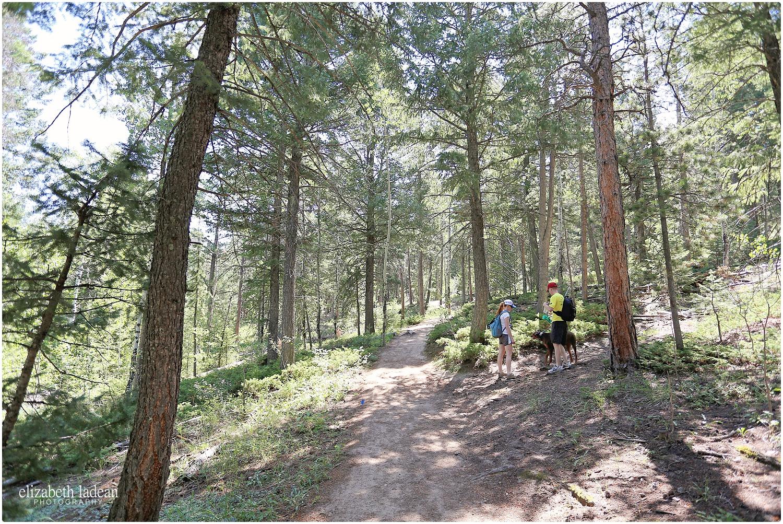 Colorado-Conifer+Evergreen-ElizabethLadeanPhotography--_6066.jpg