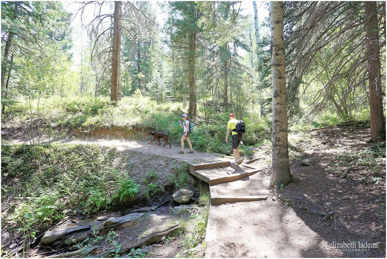 Colorado-Conifer+Evergreen-ElizabethLadeanPhotography--_6070.jpg