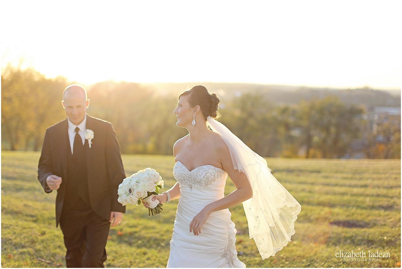 Downtown-Kansas-City-Weddings-Anniversary-R+B-Nov-ElizabethLadeanPhotography-photo_6351.jpg