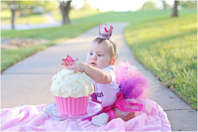 Briarcliff-Park-KC-Cake-Smash-KC-Photographer-ElizabethLadeanPhotography-photo_6390.jpg