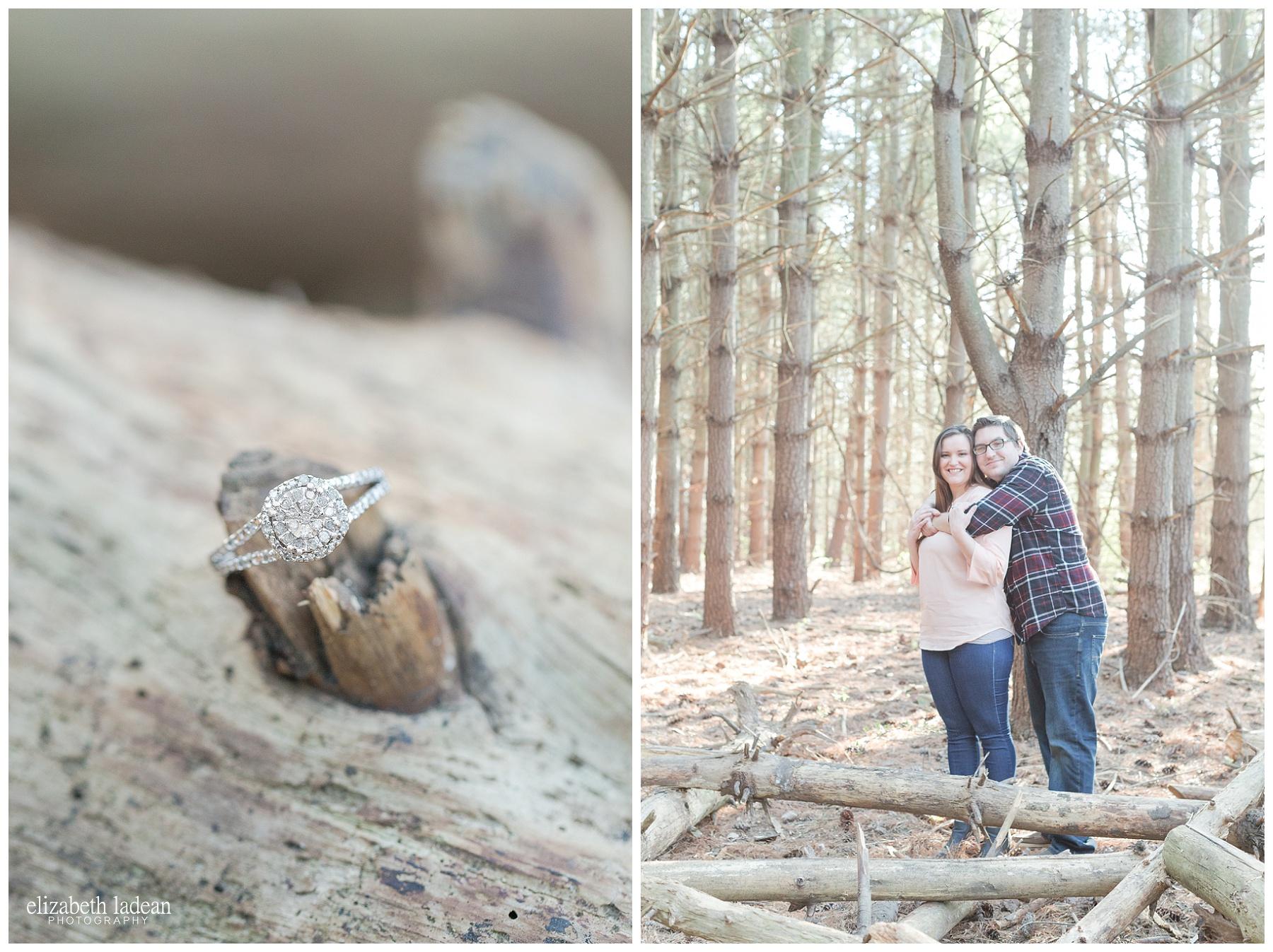Burr-Oak-Woods-Engagement-Photos-Kansas City-S+J-2017-Elizabeth-Ladean-Photography-photo_0490.jpg