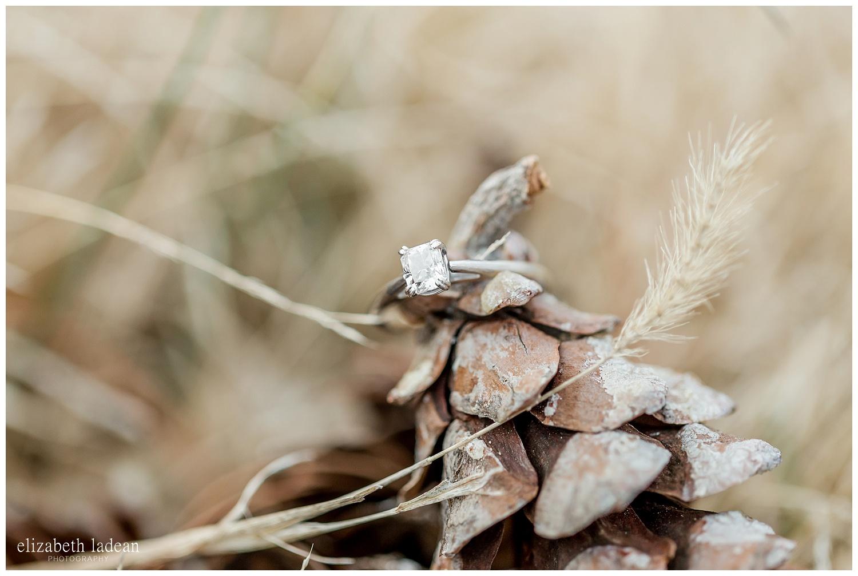 burr-oak-woods-engagement-session-kansas-city-e+a2018-elizabeth-ladean-photography-photo-_6393.jpg