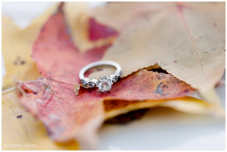 Kansas-City-Wedding-and-Engagement-Photographer-Esesh-AA-102018-elizabeth-ladean-photography-photo_2280.jpg