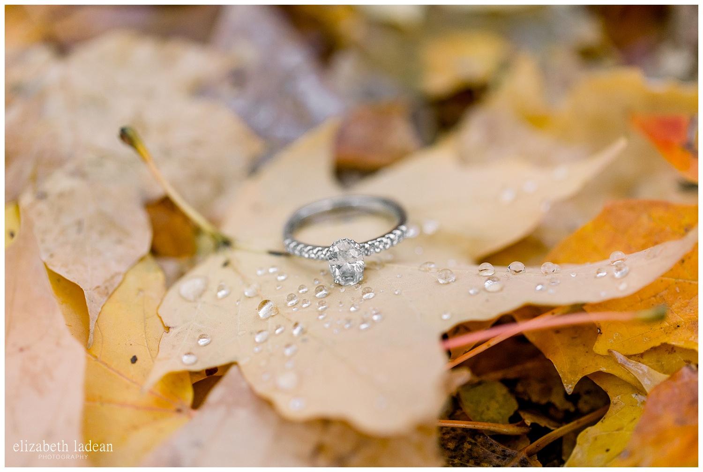 Kansas-City-Winter-Engagement-Photography-E+E-2018-elizabeth-ladean-photography-photo_2370.jpg