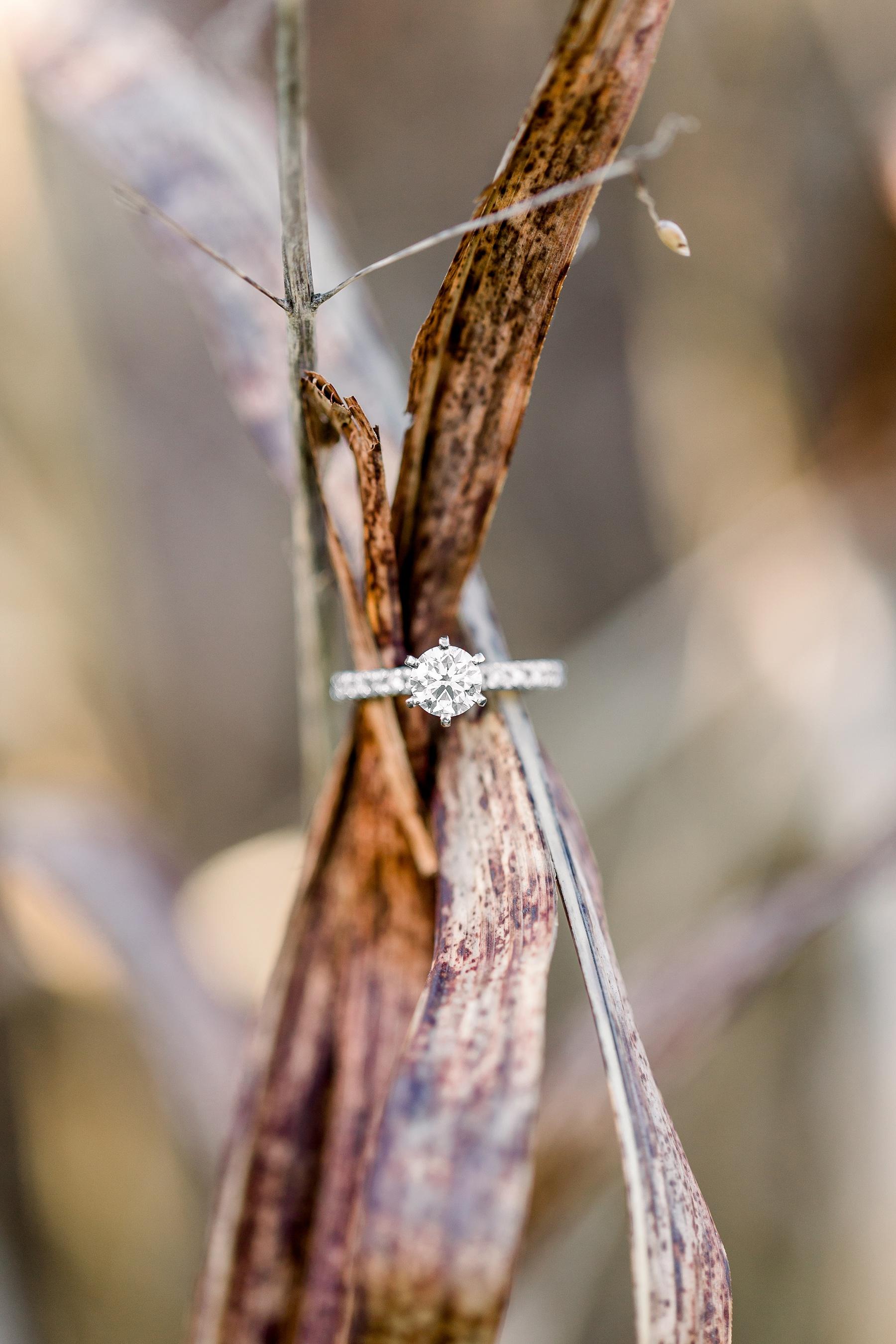 adventurous-authentic-wedding-engagement-photography-kansas-city-elizabeth-ladean-photo_5361.jpg