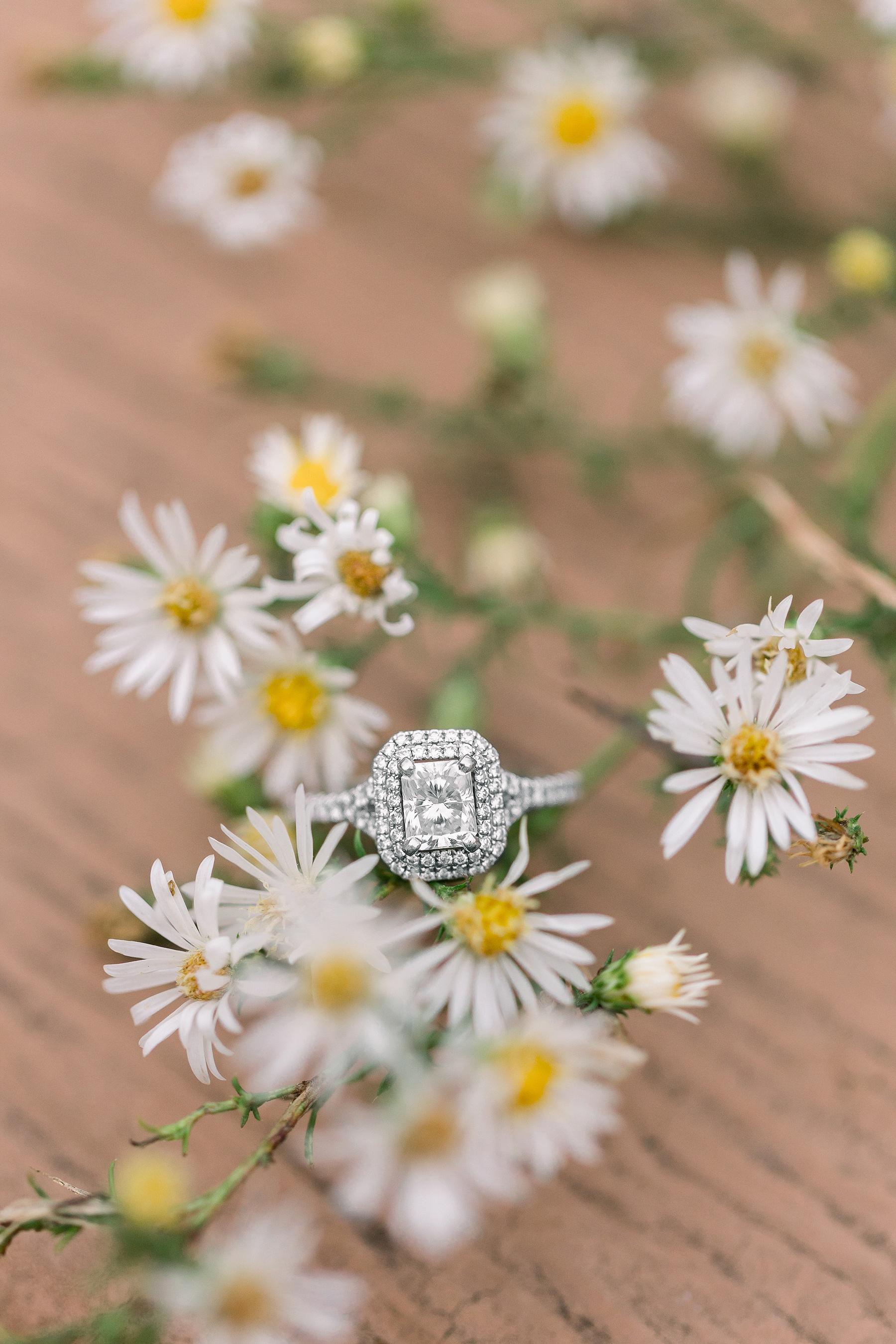 adventurous-authentic-wedding-engagement-photography-kansas-city-elizabeth-ladean-photo_5396.jpg