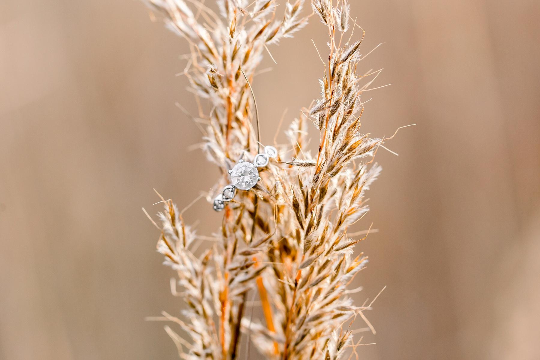 adventurous-authentic-wedding-engagement-photography-kansas-city-elizabeth-ladean-photo_5411.jpg
