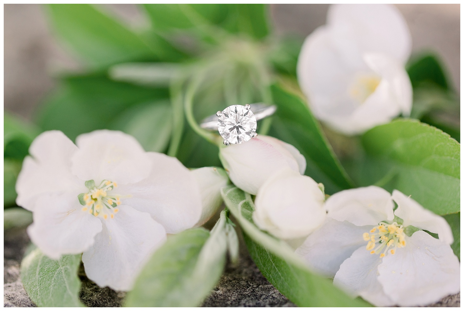 ring shot ideas for engagement rings