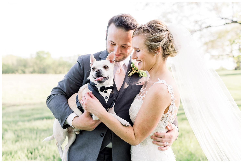dogs at weddings photos